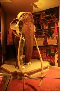 หุ่นจำลองช้างเผือกคู่พระบารมีของในหลวงเราครับ
