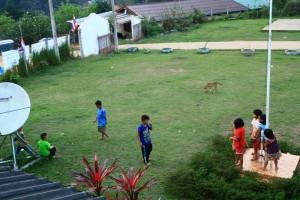 ตกเย็นเริ่มมีเด็ก ๆมาวิ่งเล่นในสนามหญ้าแถว ๆที่พัก